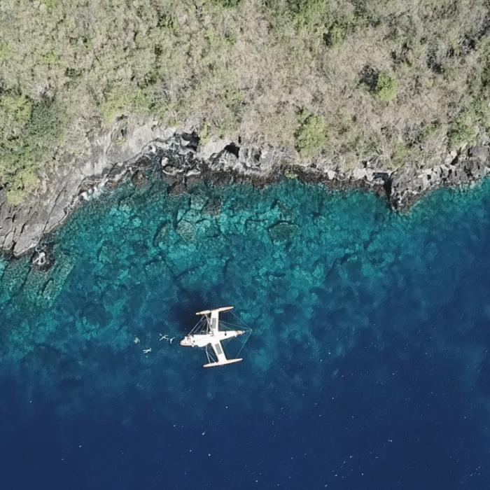 Voyager Vrai – Martinique